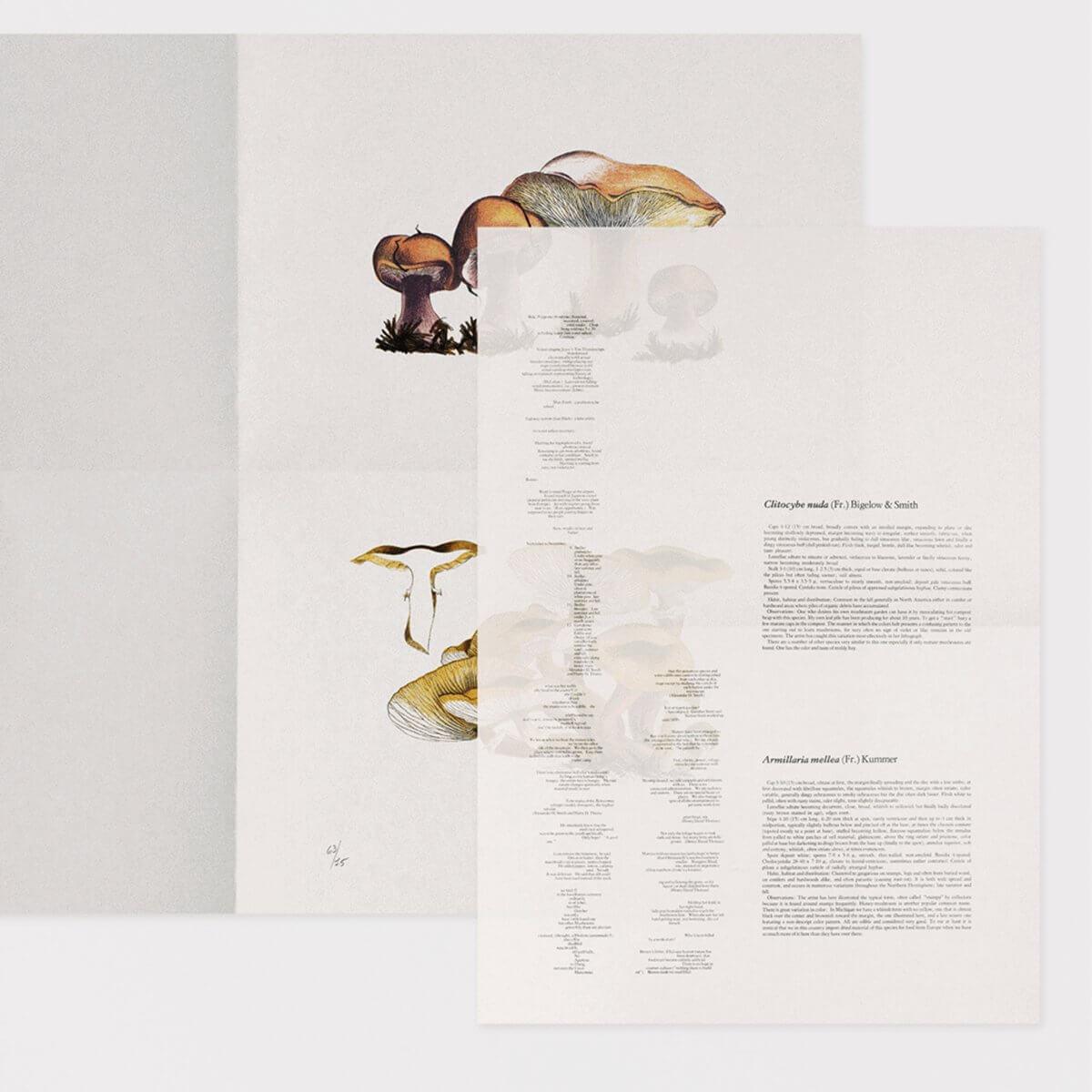 John-Cage The Mushroom Book